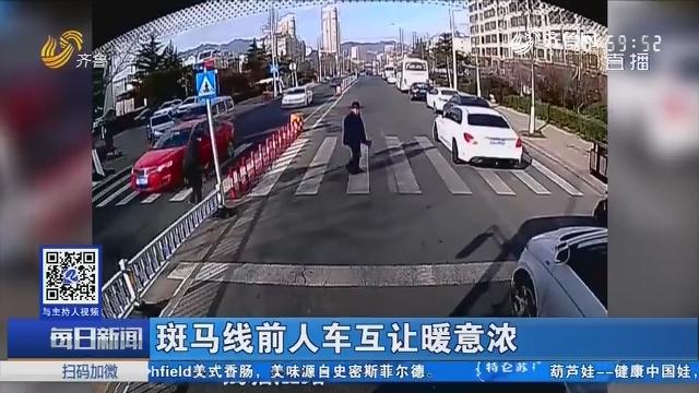 青岛:斑马线前人车互让暖意浓