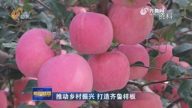 【推动乡村振兴 打造齐鲁样板】山东:外向型农业助推乡村振兴