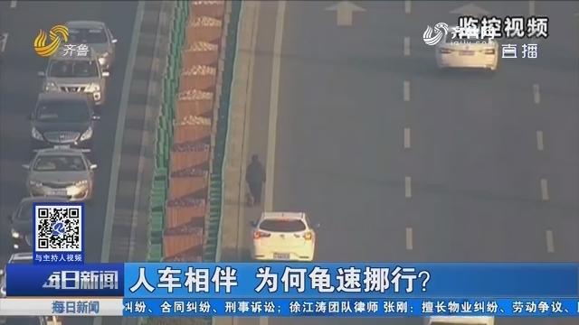 青岛:人车相伴 为何龟速挪行?