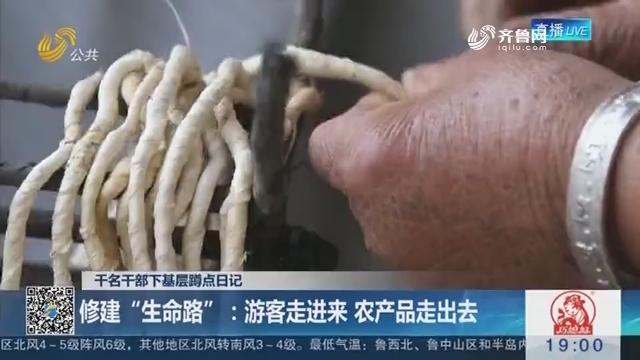 """【千名干部下基层蹲点日记】潍坊:修建""""生命路"""" 游客走进来 农产品走出去"""