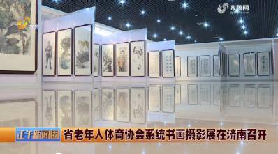 省老年人体育协会系统书画摄影展在济南召开