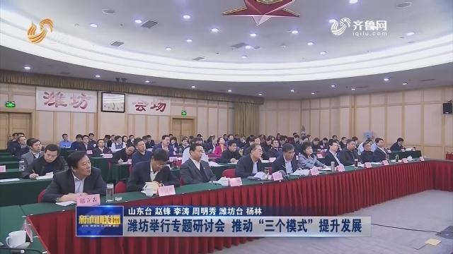 """潍坊举行专题研讨会 推动""""三个模式""""提升发展"""