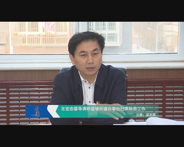 王宏志督导调研遥墙街道服务处扫黑除恶事情
