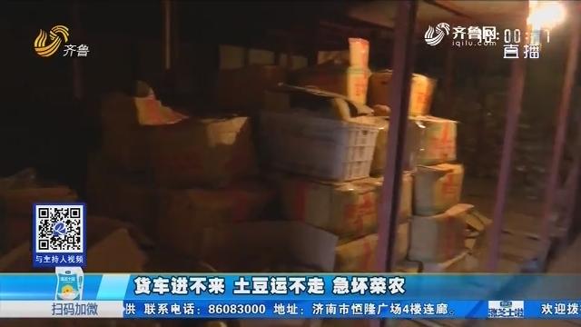 肥城:货车进不来 土豆运不走 急坏菜农
