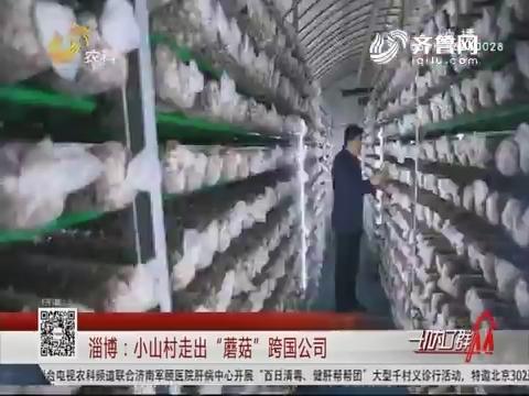 """淄博:小山村走出""""蘑菇""""跨国公司"""