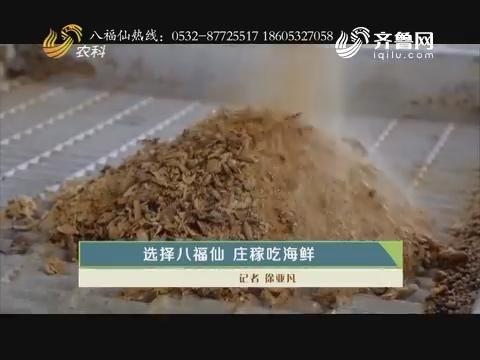 选择八福仙 庄稼吃海鲜