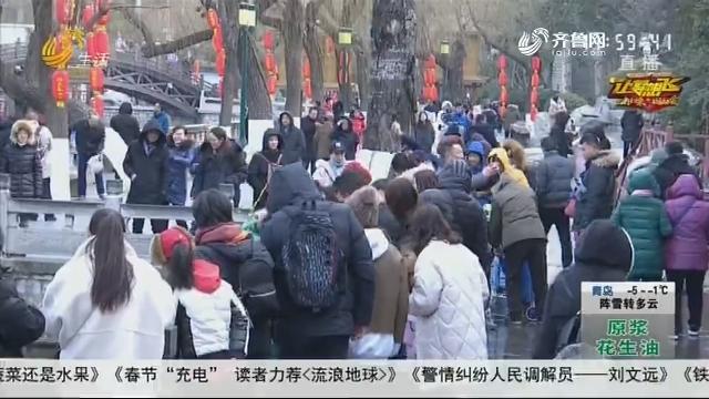 """""""网红""""济南热度不减 游客忙打卡"""