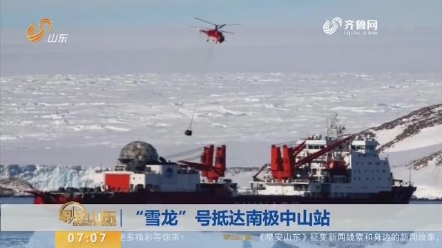 """【昨夜今晨】""""雪龙""""号抵达南极中山站"""