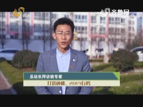 20190210《总站永劫间》:总站长造访桃专家——打谱种桃,2019行吗