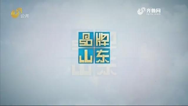 2019年02月10日《品牌山东》完整版