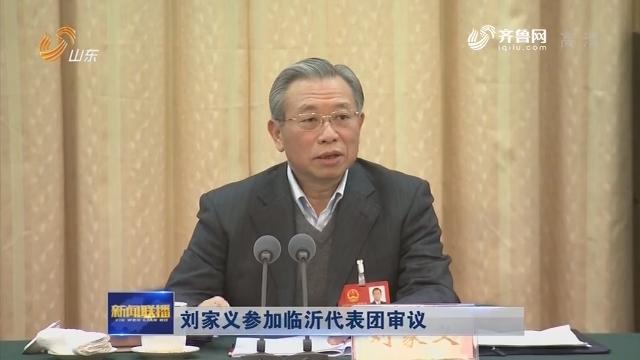 刘家义参加临沂代表团审议