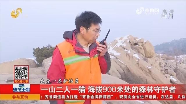 一山二人一猫 海拔900米处的森林守护者