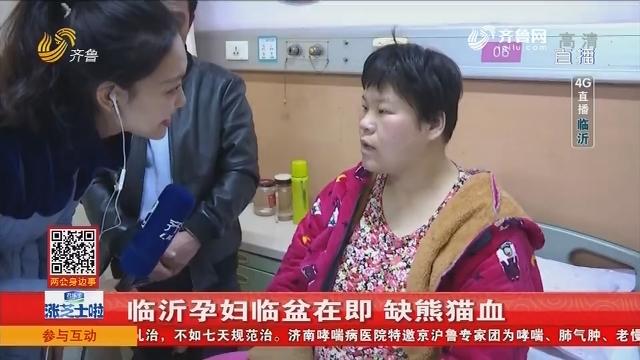 【4G直播】临沂孕妇临盆在即 缺熊猫血
