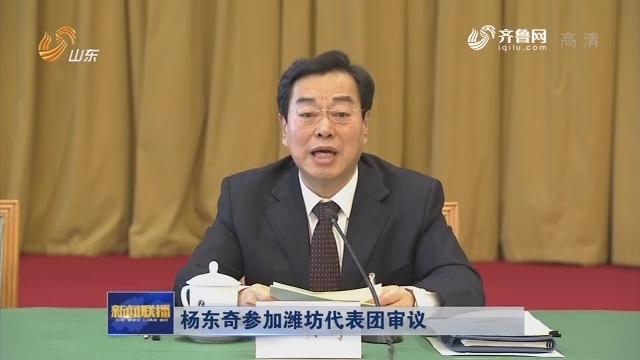杨东奇参加潍坊代表团审议