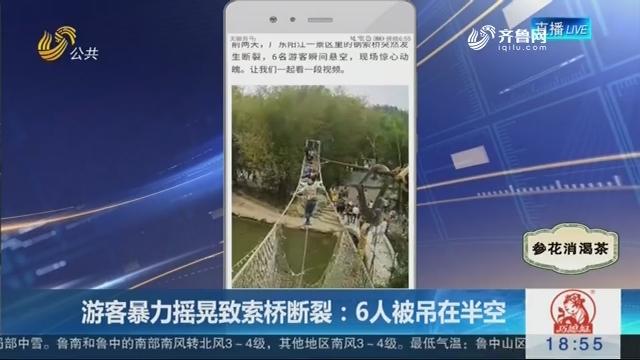 【新说法】游客暴力摇晃致索桥断裂:6人被吊在半空