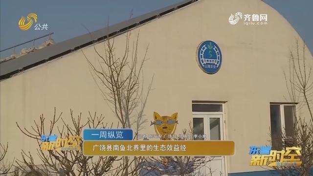 广饶县南鱼北养里的生态经