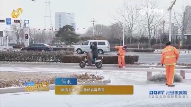 瑞雪兆丰年 东营新春再降雪