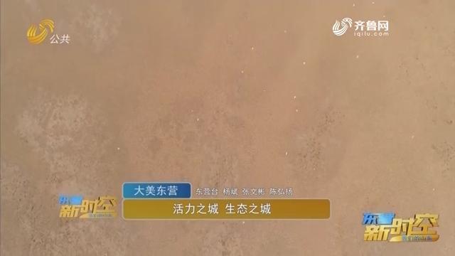【大美东营】活力之城 生态之城