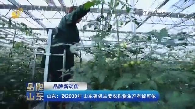 【品牌新动能】山东:到2020年 山东确保主要农作物生产有标可依