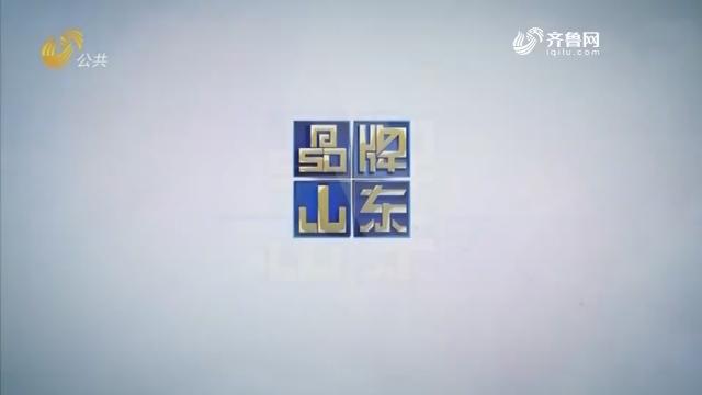 2019年02月17日《品牌山东》完整版