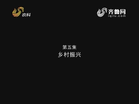 走在前列——山东农业改革开放40周年 第五集:乡村振兴