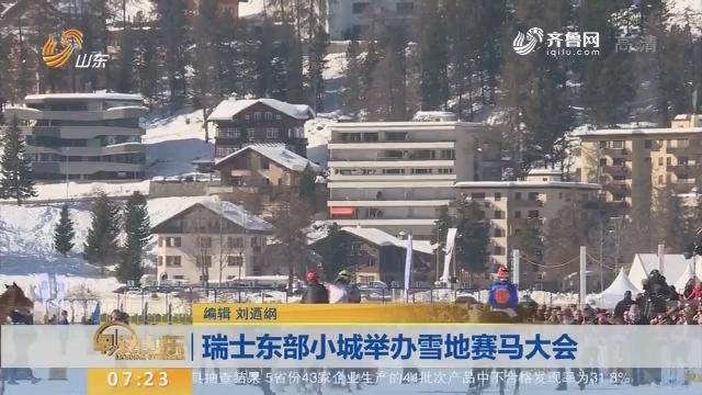 瑞士东部小城举办雪地赛马大会