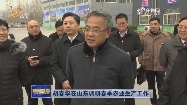 胡春华在山东调研春季农业生产工作
