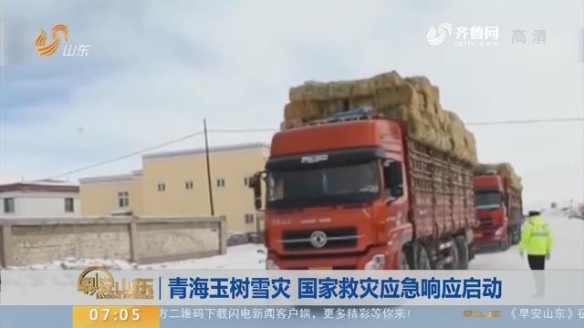 【昨夜今晨】青海玉树雪灾 国家救灾应急响应启动