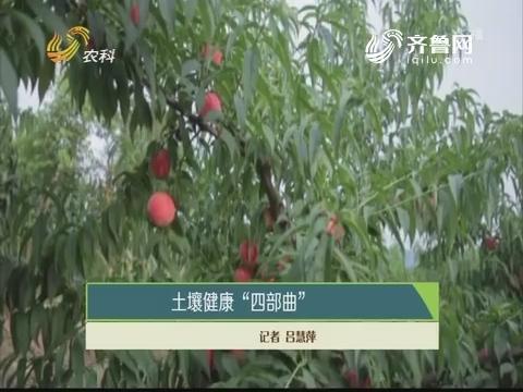 """土壤健康""""四部曲"""""""