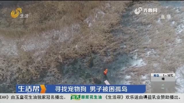 潍坊:寻找宠物狗 男子被困孤岛