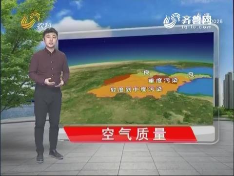 看天气:八九到来气温升 阳光送暖初春至