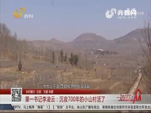 【乡村振兴】第一书记李凌云:沉寂700年的小山村活了