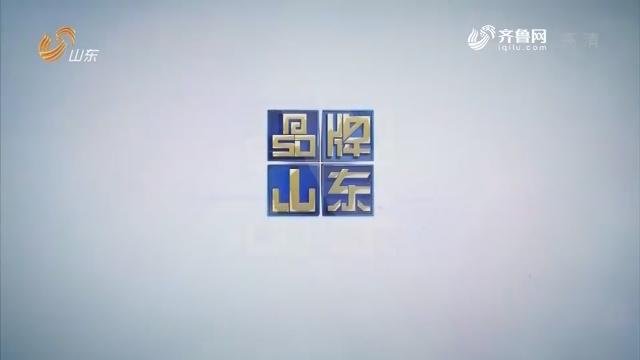 2019年02月25日《品牌山东》完备版