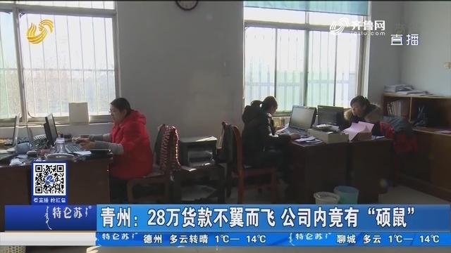"""青州:28万货款不翼而飞 公司内竟有""""硕鼠"""""""
