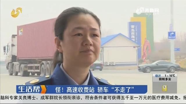 """青岛:怪!高速收费站 轿车""""不走了"""""""