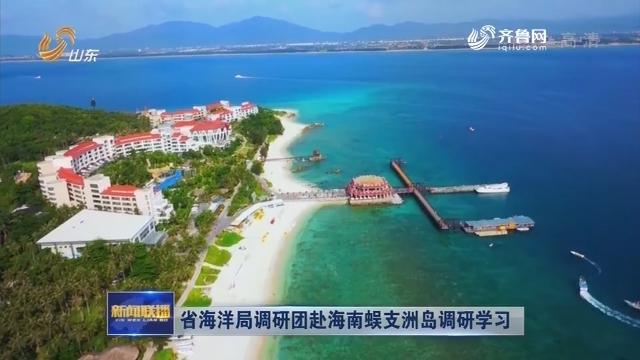 省海洋局调研团赴海南蜈支洲岛调研学习