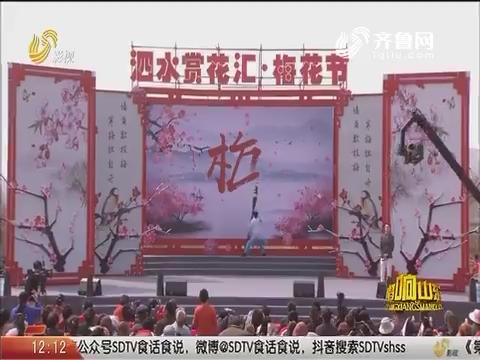 20190303《唱响山东》:泗水赏花汇·梅花节