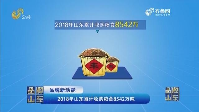 【品牌新动能】2018年山东累计收购粮食8542万吨