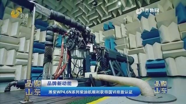 【品牌新动能】潍柴WP4.6N系列柴油机顺遂得到国VI排放认证