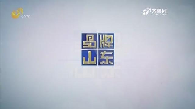 2019年03月03日《品牌山东》完备版