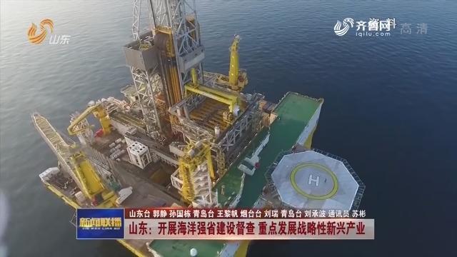 山东:开展海洋强省建设督查 重点发展战略性新兴产业