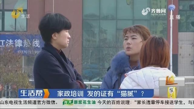"""潍坊:家政培训 发的证有""""猫腻""""?"""
