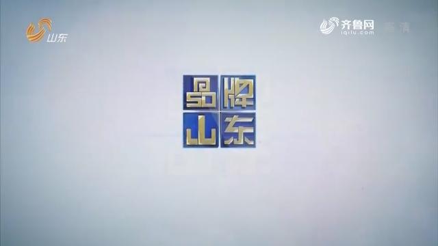 2019年03月04日《品牌山东》完备版