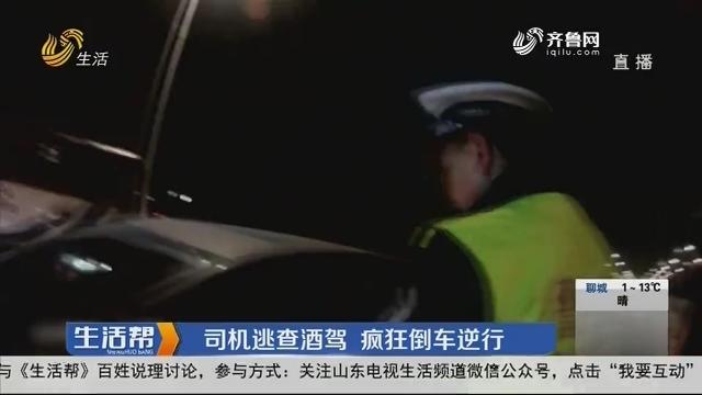 淄博:司机逃查酒驾 疯狂倒车逆行