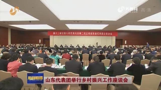山东代表团举行乡村振兴工作座谈会