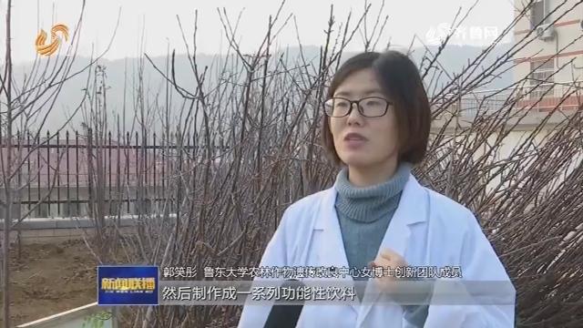 """【""""半边天""""风采】鲁东大学:女博士团队助力乡村振兴"""