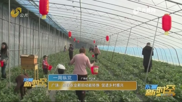 广饶:加速农业新旧动能转换 促进墟落复兴