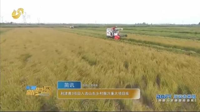 利津县3项目当选山东墟落复兴庞大项目库