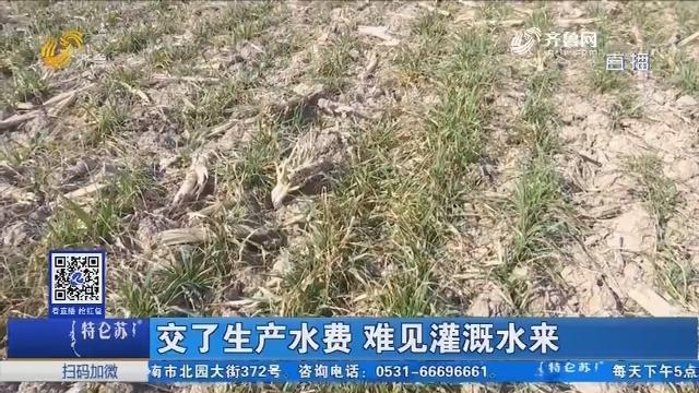 滨州:交了生产水费 难见灌溉水来