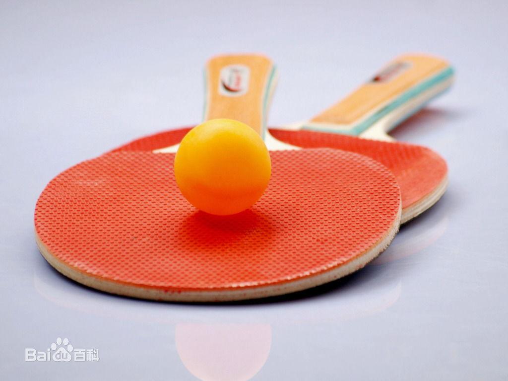 少儿乒乓球赛开打 百名乒乓小将争锋